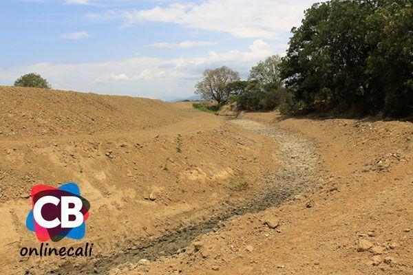 Laguna de Sonso: ecosistema en alerta